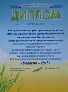 Награды_2015_отчет 009